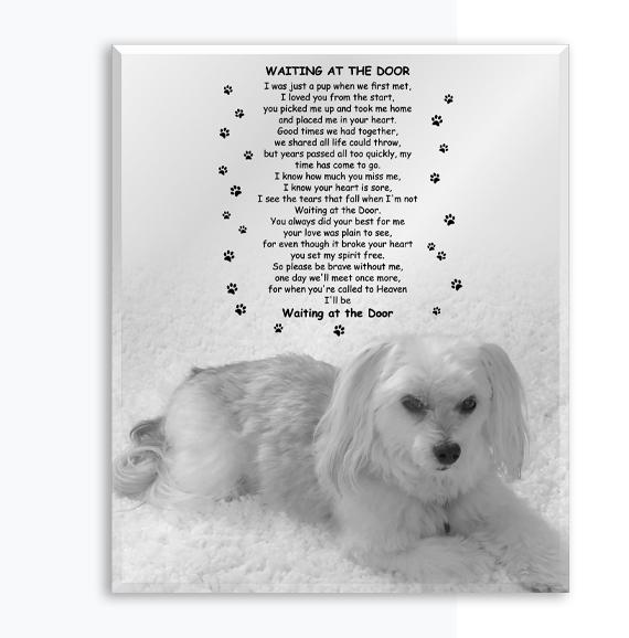 Mirror Etchings - Pet Memorial